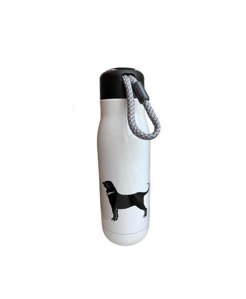 Stainless Steel Caribiner Water Bottle
