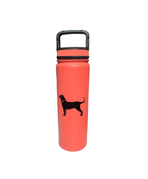 Stainless Eugene Water Bottle