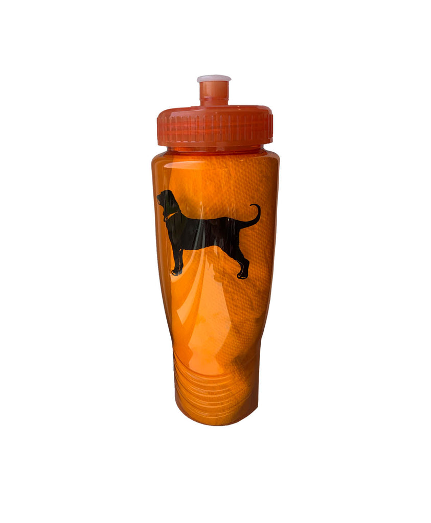Classic Sports Bottle