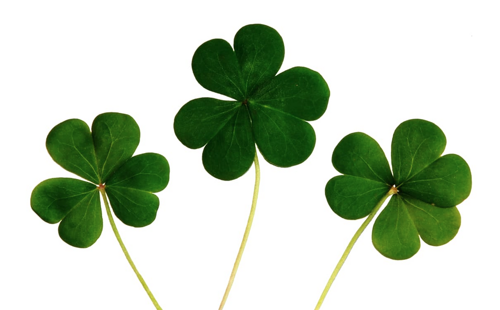 Seven Signs of Luck in your Life