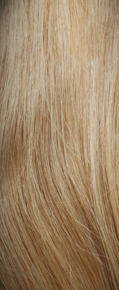 Clip in Hair Extensions Honey Blonde (18#)