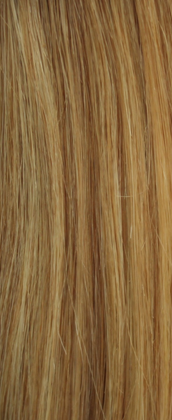 Clip in Hair Extensions Highlighted Blonde (18/22#)1