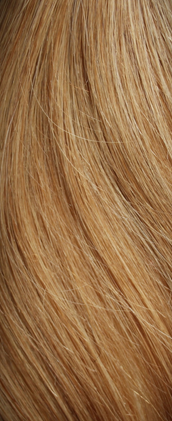 Clip in Hair Extensions Caramel Blonde (27S#)