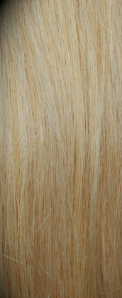 Clip in Hair Extensions Remy Bleach Blonde (613#)