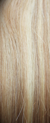 Clip In Hair Extensions - Highlighted Blonde 18/22#
