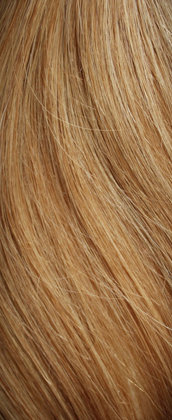 Clip In Hair Extensions - Caramel Blonde 27S#