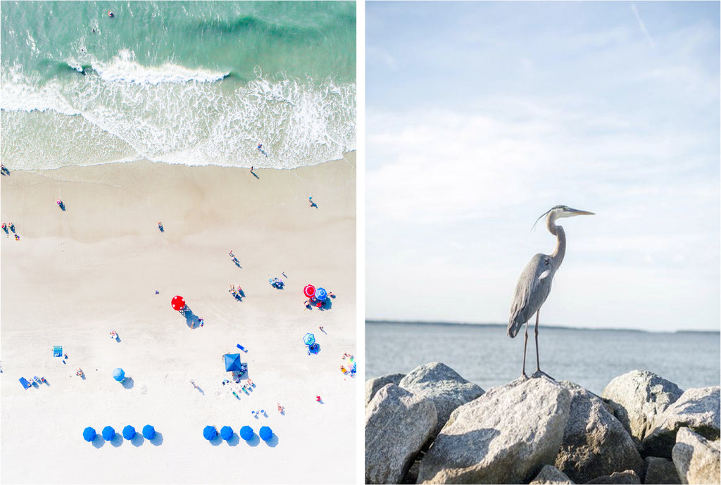 travel tuesday : hilton head island + the lowcountry