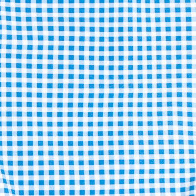 girl's blue gingham ruffle collar one piece
