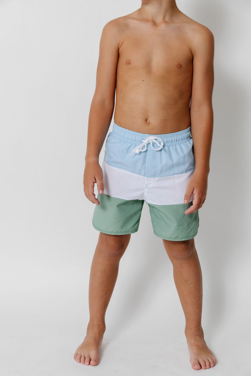 boys french blue color block boardie