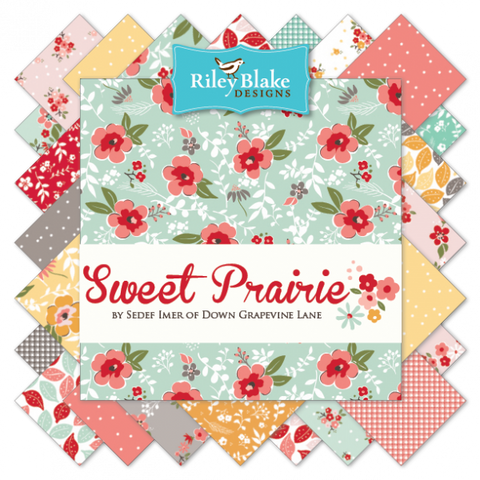 Sweet Prairie by Sedef Imer of Down Grapevine Lane