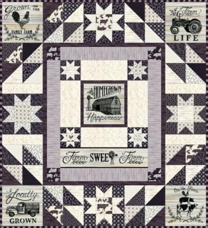 """Homegrown"" Quilt Kit 51"" x 56"" by Deb Strain for Moda"