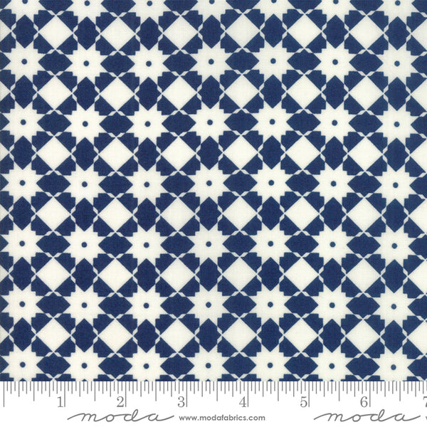 """Garden Variety""-Floral Bright Side Navy by Lella Boutique for Moda"