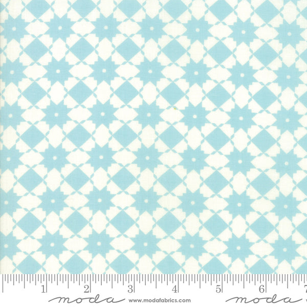 """Garden Variety""-Floral Bright Side Blue Sky by Lella Boutique for Moda"