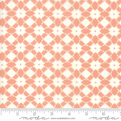 """Garden Variety""-Floral Bright Side Apricot by Lella Boutique for Moda"
