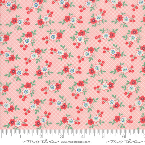 """30's Playtime 2018""-Posy Patch Pink by Chloe's Closet for Moda"