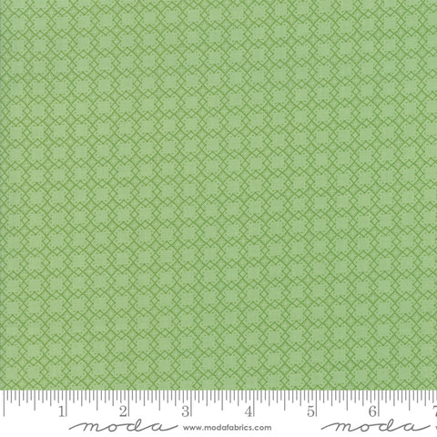 """Bloomington""-Sage Mini Lattice by Lella Boutique for Moda"
