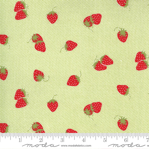 """Sunday Stroll""-Berry Patch Light Green by Bonnie & Camille for Moda"