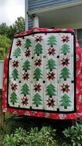 Star Crossed Pines Quilt Kit