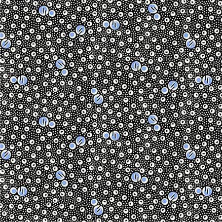 """Blue/Black Bubbles""- Feedsack by Washington Street Studio for Checker"
