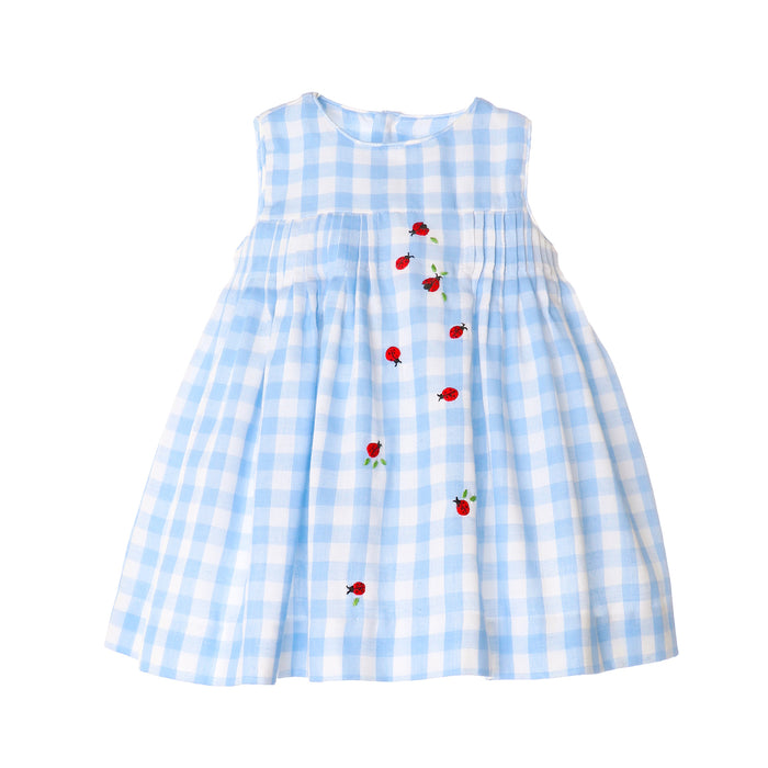 Ladybug Lunch Dress