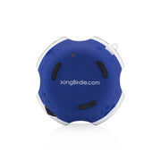 gbsbt - The Patriot speaker- songBirdie