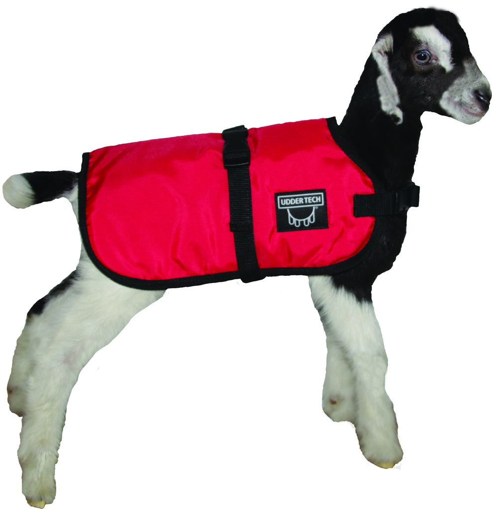 Udder Tech, Inc. launches NEW Kid and Lamb Blankets