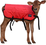 Calf Blanket - Calf Jacket