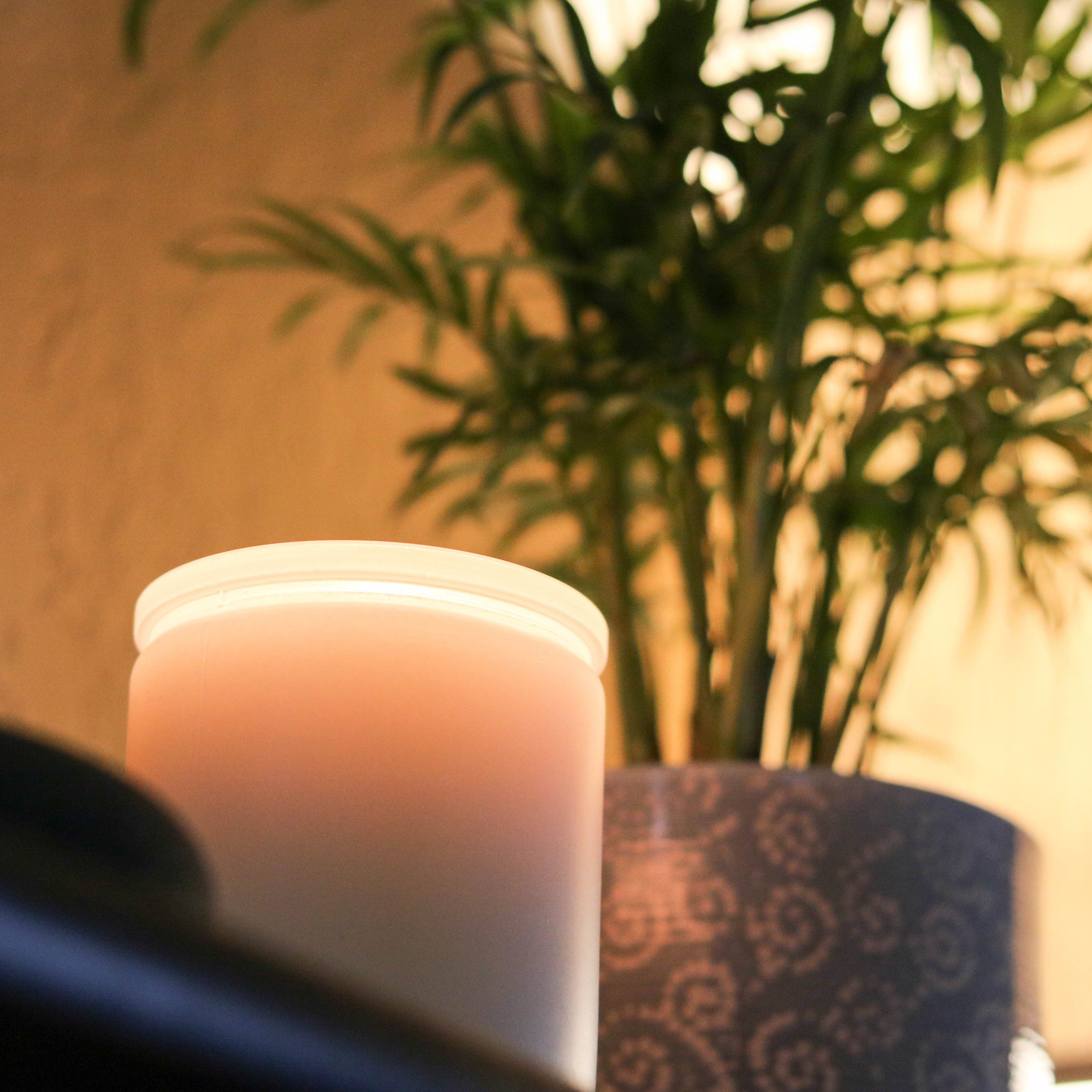 Black Currant Candles Elevated Candles