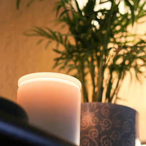 White Tea + Jasmine Candles Elevated Candles