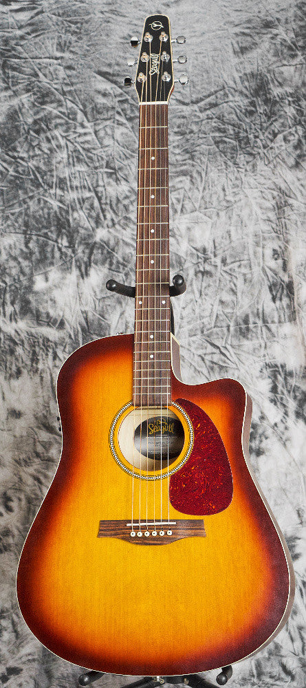 Seagull Entourage Rustic QIT Solid Top Acoustic Guitar for Sale at Coffey Music
