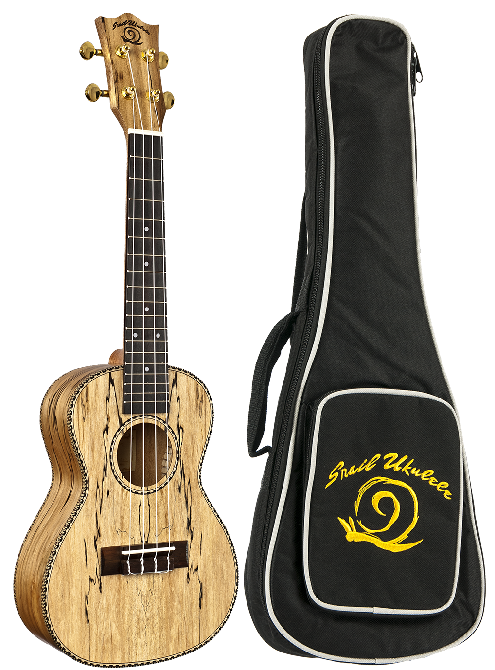 Spalted Maple Concert Classic Ukulele at Coffey Music