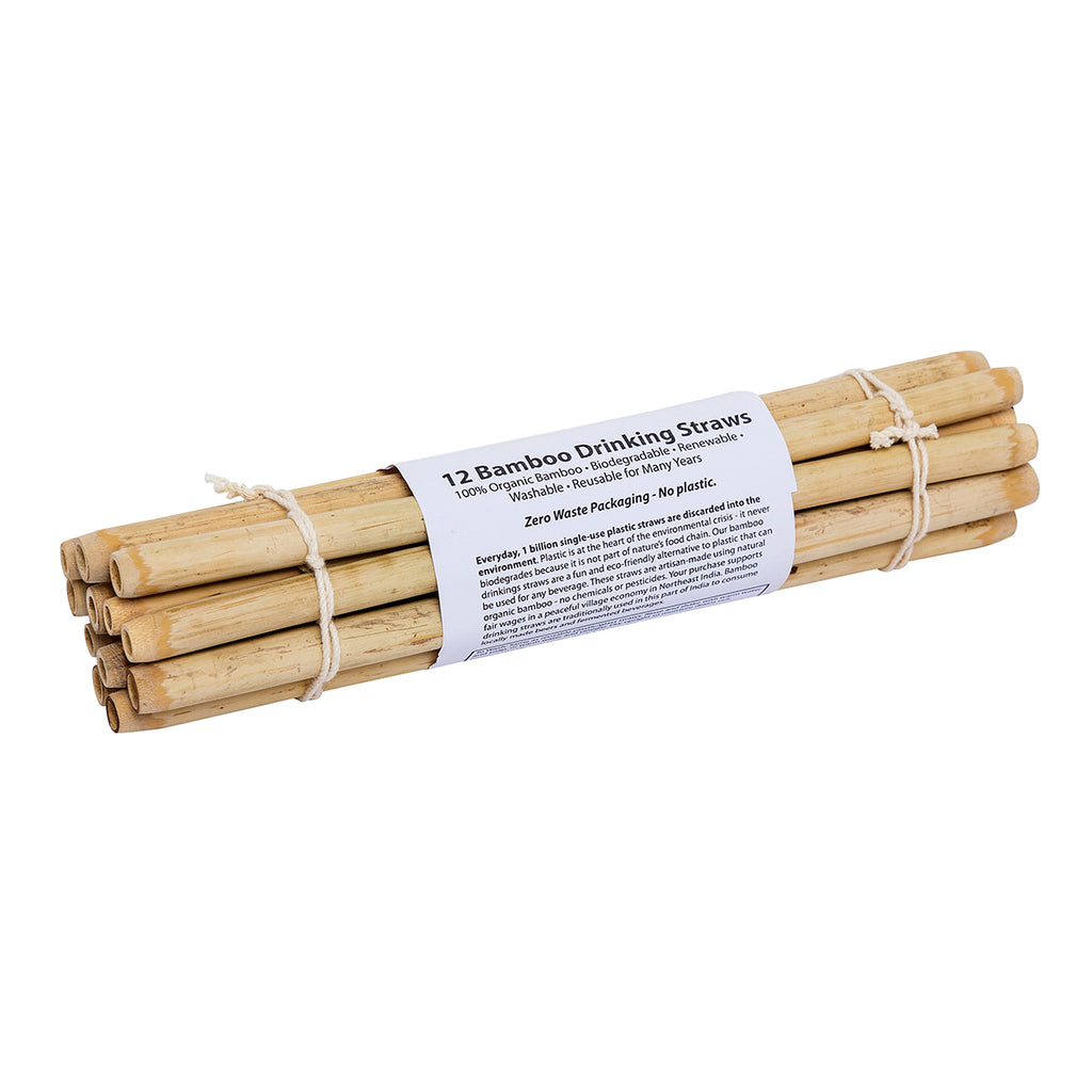 Bamboo Straw Set of 12