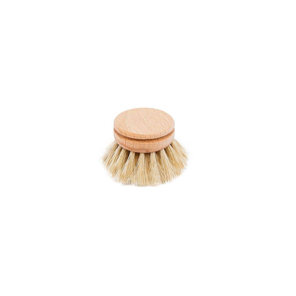 Everyday Dish Brush Refill