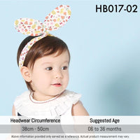 Headbands, HB017 - Levitt Fruit Head Band - The Baby Zebra