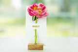 FLOWER NOTE BUD VASE