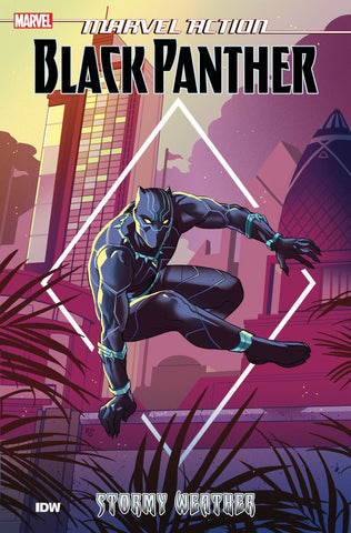 Marvel Action: Black Panther Volume 1: Stormy Weather
