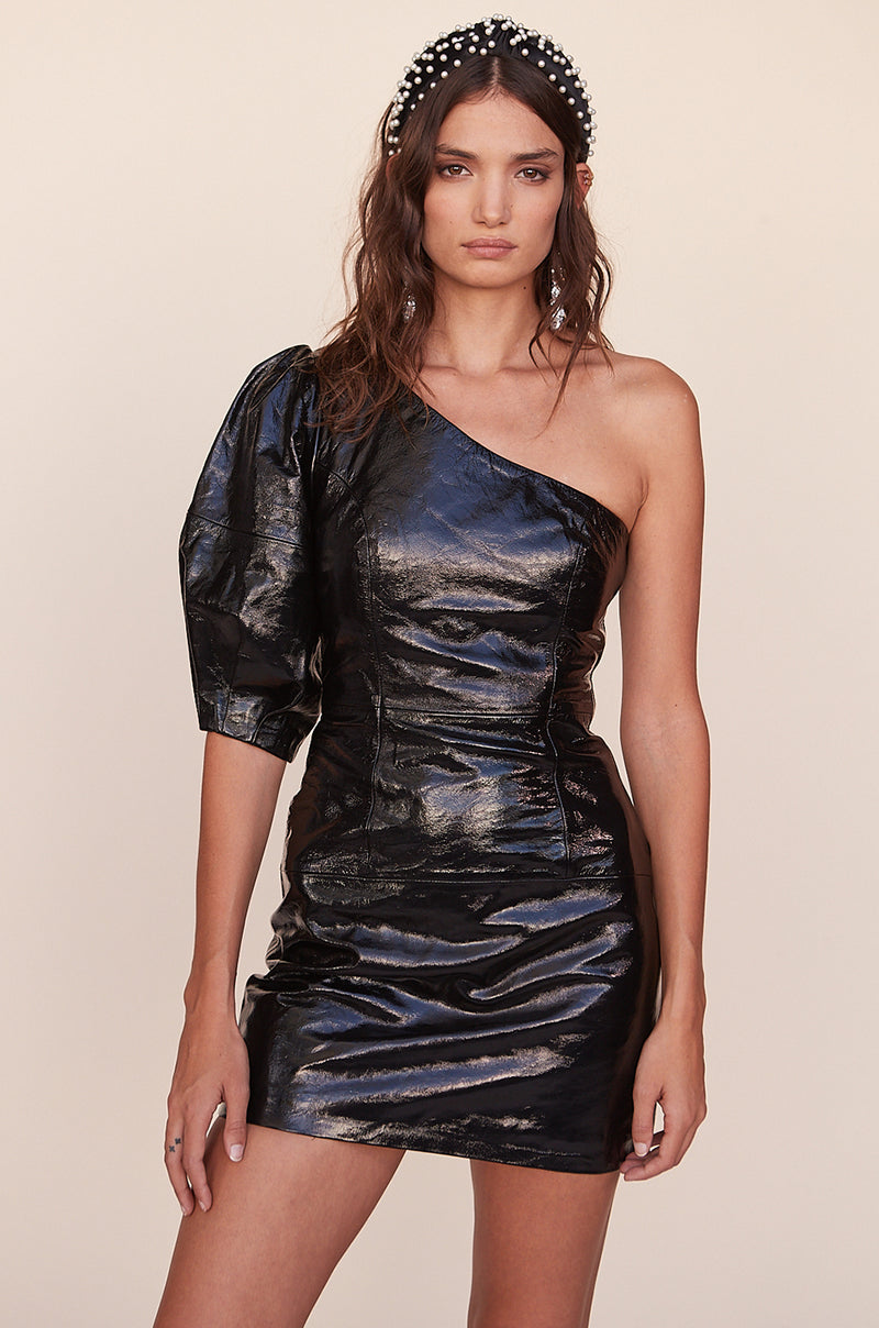 Sheyla Leather Mini Dress