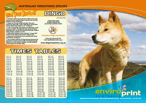 Dingo Times Table Sheet (Pack)
