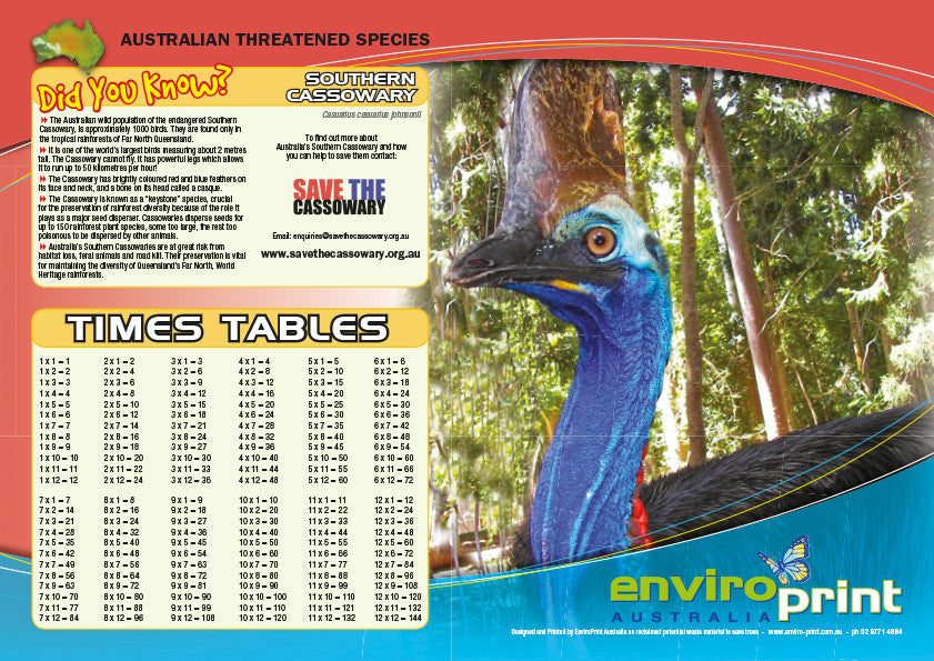 Cassowary Times Table Sheet (Pack)