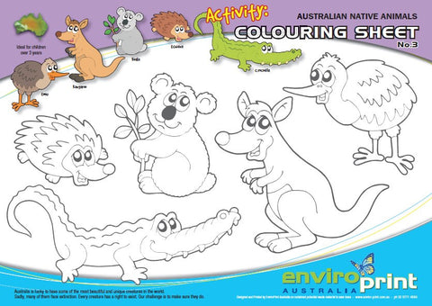 Australian Native Species Colouring Sheet No.3 (Pack)