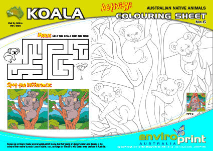Koala - Australian Threatened Species Colouring Sheet No.6 (Pack)