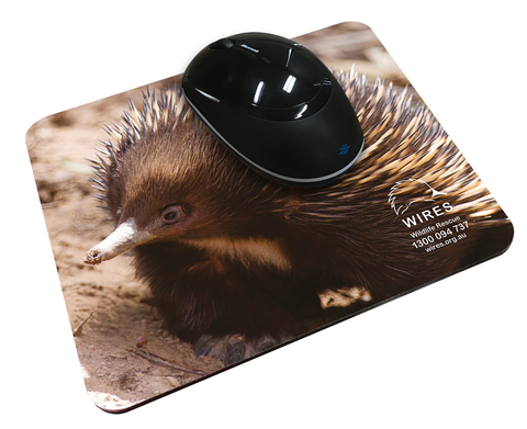 WIRE0020 - WIRES Mouse Mat (Echidna)