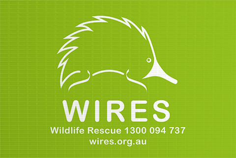 WIRE0018 - WIRES Corflute Sign