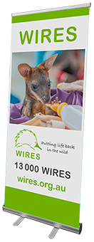 WIRES Pull Up Banner - Wallaby Joey
