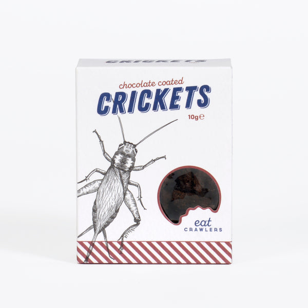 Chocolate Dipped Crickets