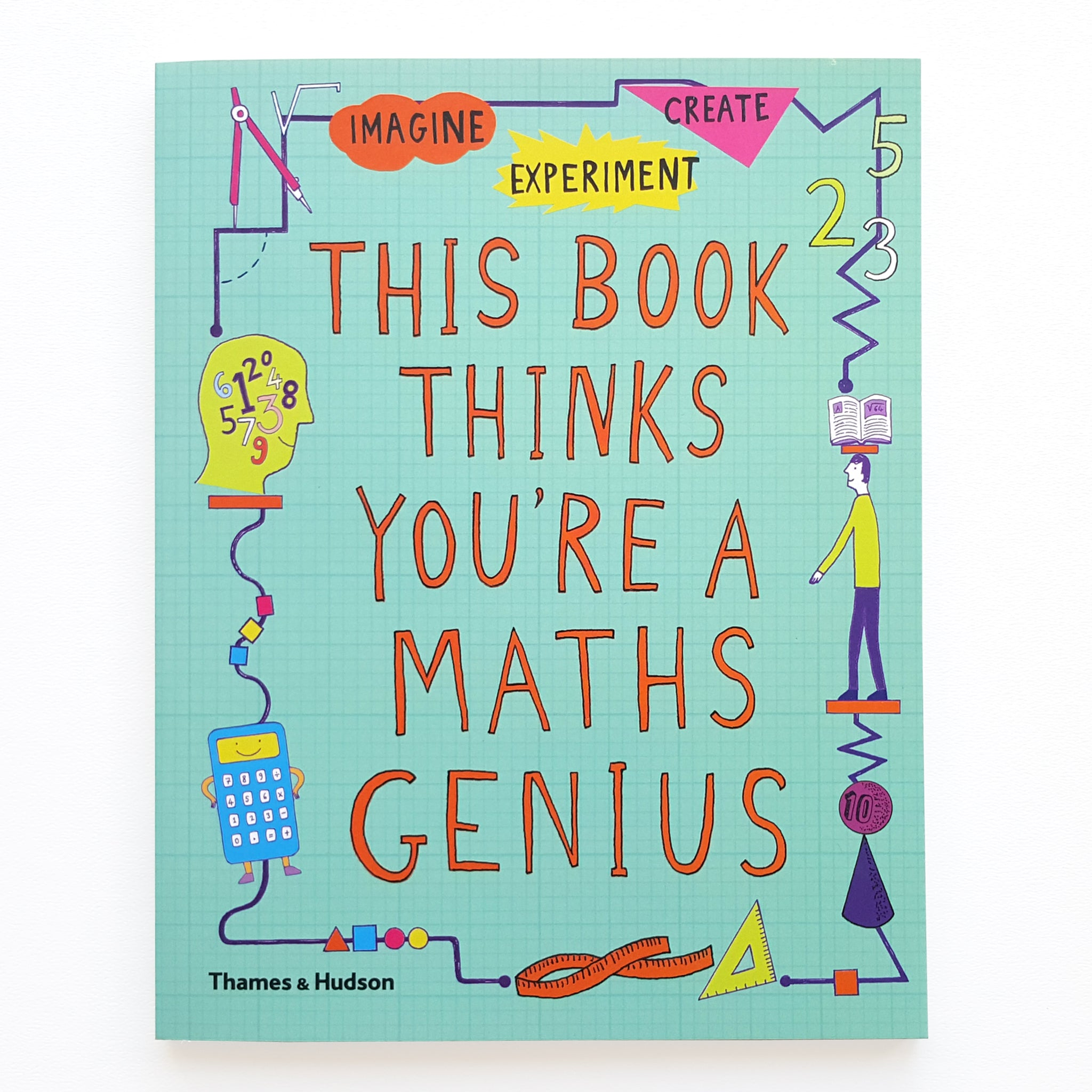 This Book Thinks You're A Maths Genius Image