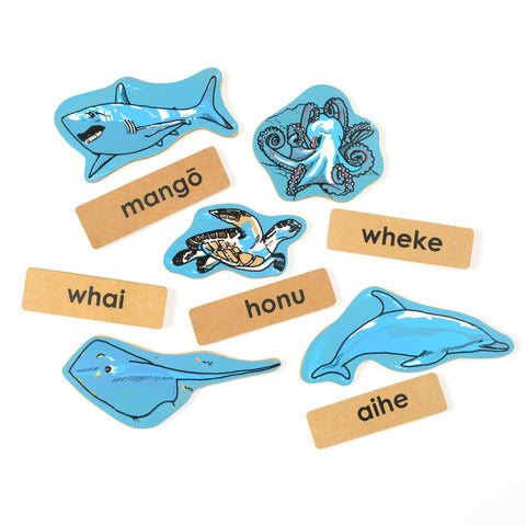 Māori Sealife Magnet Set
