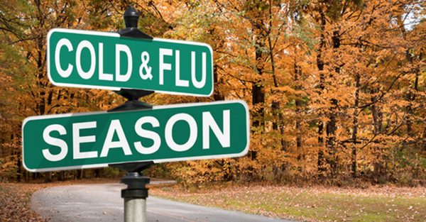 Cold and Flu Season - What to do if You Get Sick!