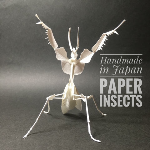 Paper insects Paper Insects - USMantis