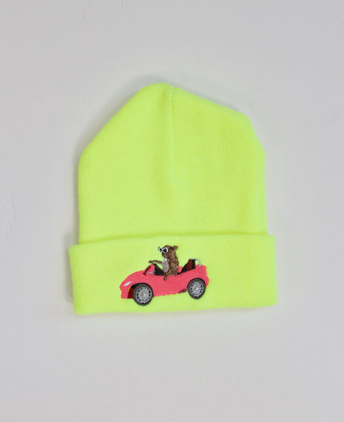 Green Flash Beanie